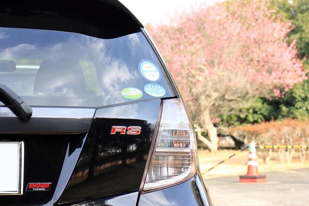 FIT RS-30.JPG